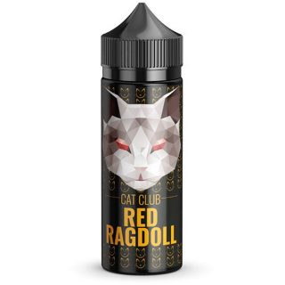 Cat club Red Ragdoll